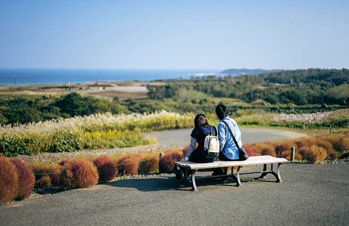 How can rural Japan bring back locals and tourists?