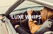 LUXE WHIPS