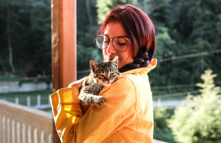 How are pet owners caring for their furry friends while on holiday?