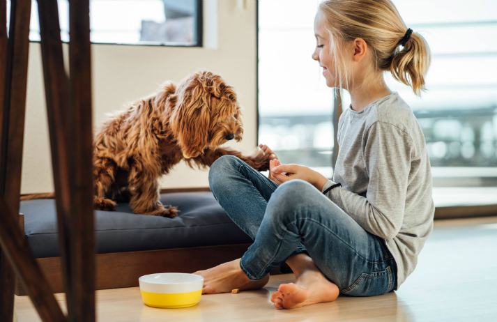 Serving pet food made from human-grade ingredients