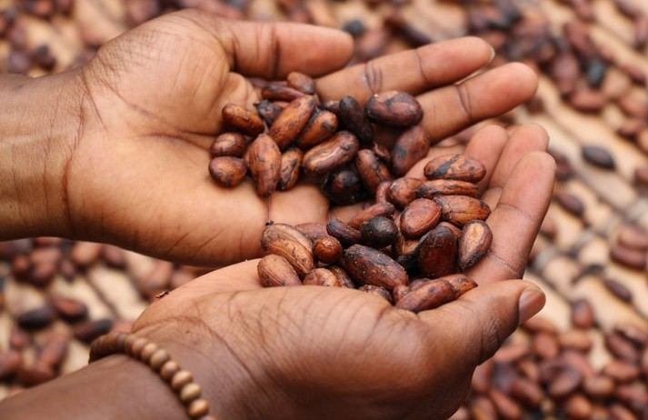 Cacao waste chocolate targets sustainable snackers