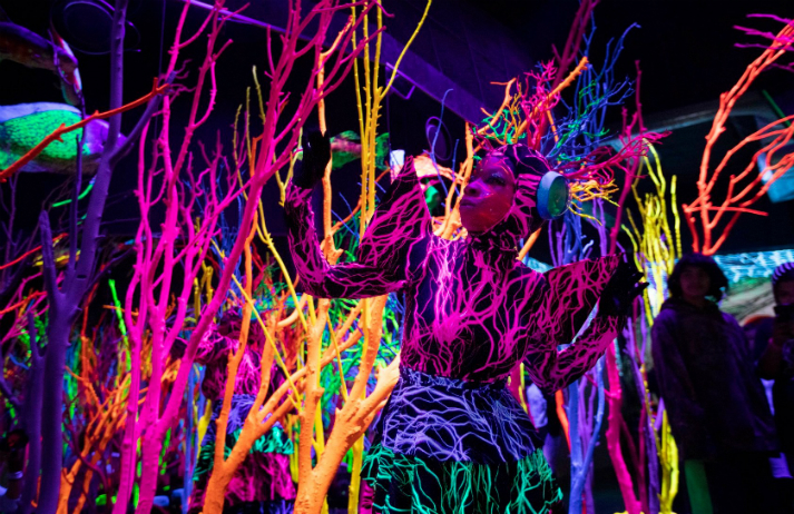 Meow Wolf offers immersive, escapist art experiences