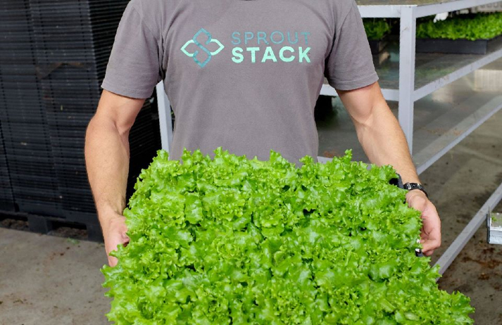 Sprout Stack brings farm-fresh produce to Aussie cities