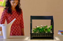 IKEA helps people grow plants indoors