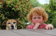 Kids get on better with their pets than their siblings