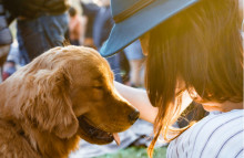 Health benefits of dog owning boosts pet products